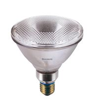 Bulbrite H45PAR38FL 45 Watt 120 Volt Clear PAR38 Halogen Flood Bulb