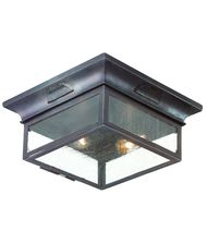 Troy Lighting CCD9000 Newton 2 Light Outdoor Flush Mount
